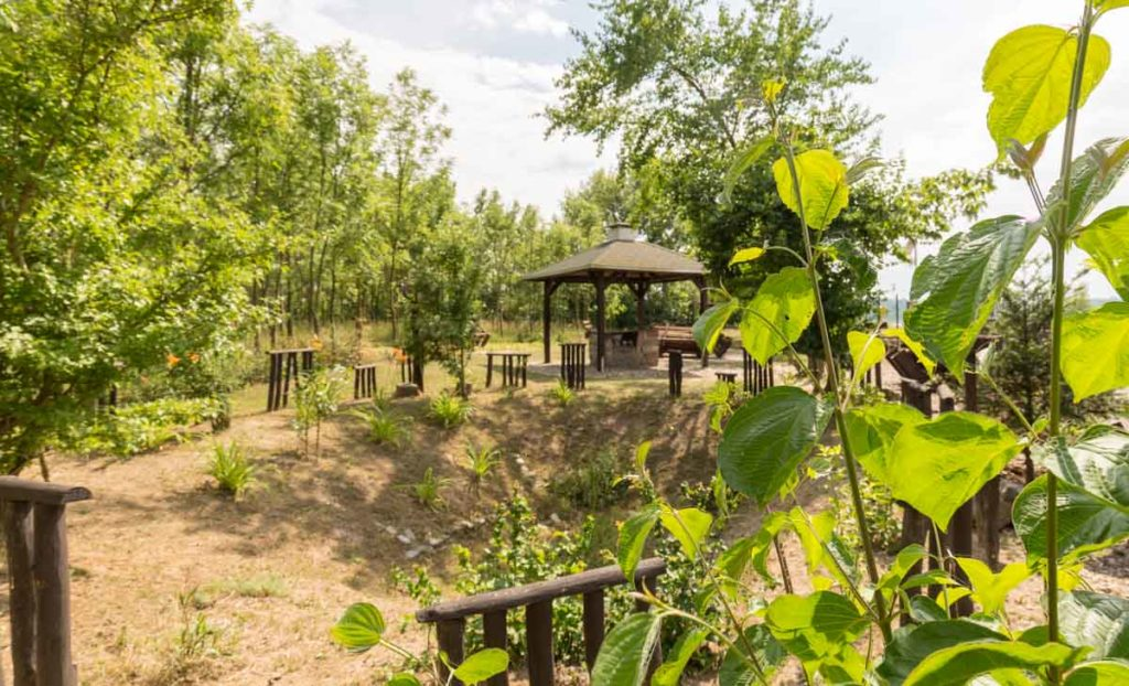 grüne Idylle an der Wetterschutzhütte