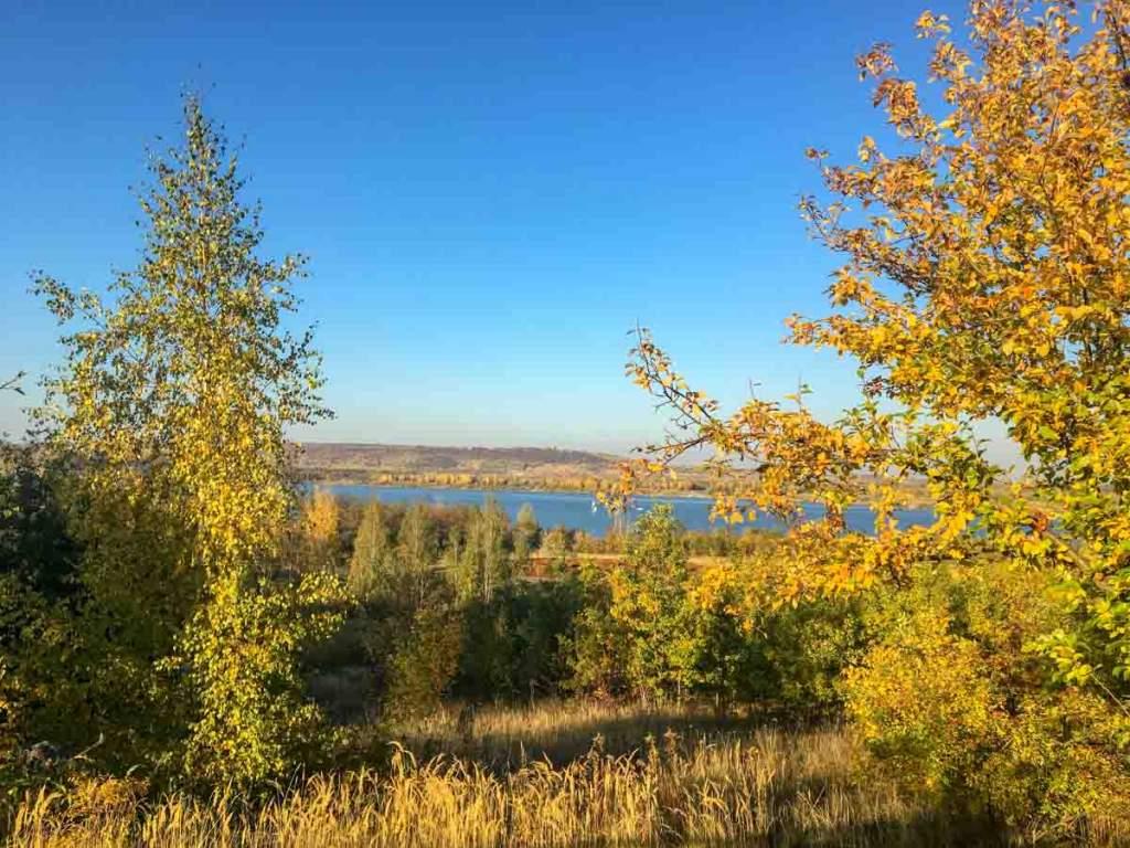 goldener Herbst am See