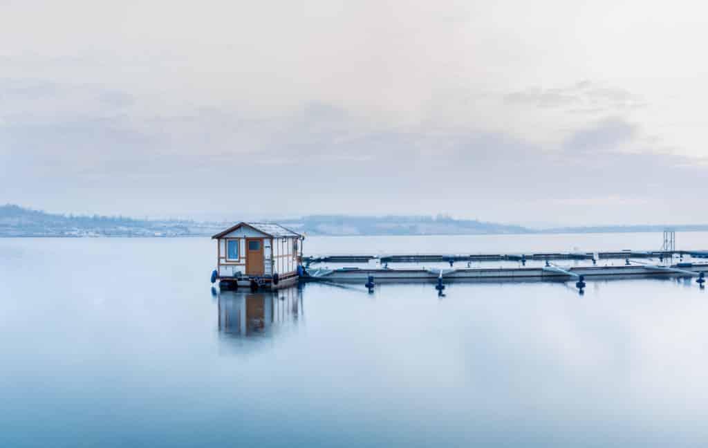 Marina Mücheln Winter Hausboot