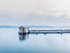 Bild 0023   Hausboot im Hafen