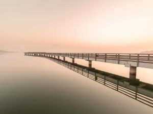 Bild 007 | Seebrücke Braunsbedra im Nebel